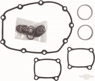 Cometic Cam Chain Kit For 2018-2020 Softail, 2017-2020 Touring Models (C10178) (OEM25700731)